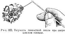 dovoennoe-pchelovodstvo-23.jpg