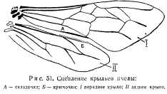 pchelovodstvo-v-1937-27.jpg