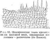 pchelovodstvo-v-1937-35.jpg