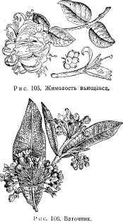 pchelovodstvo-v-1937-47.jpg