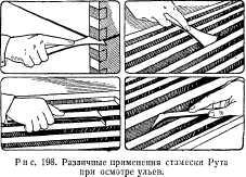 pchelovodstvo-v-1937-69.jpg